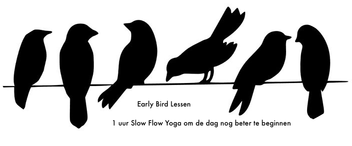 Early Bird Yoga Groningen   Home